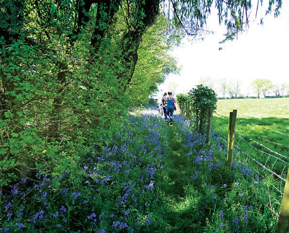 walking near kings langley